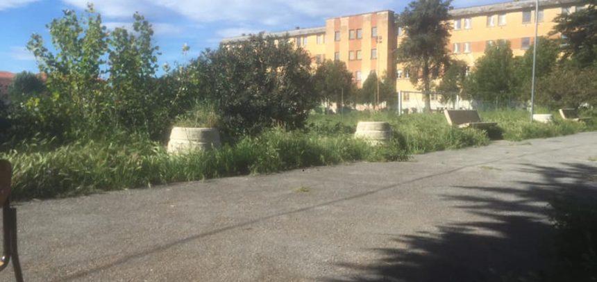 Il campo da calcio delle ex Caserme Revelli sempre più invaso dalle erbacce, quando il degrado va in gol